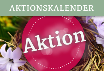 Aktionsangebote
